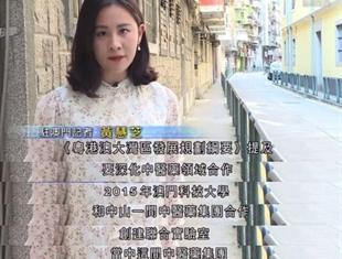 """香港无线电视新闻报道:中医药发展""""港澳可以发挥优势"""""""